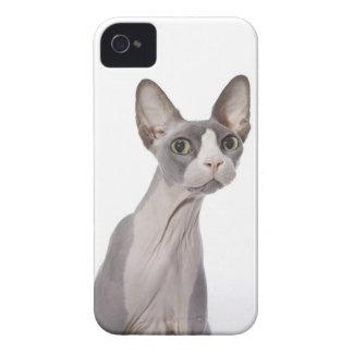 Gato de Sphynx con la expresión sorprendida iPhone 4 Fundas
