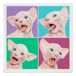 Gato de Sphynx Perfect Poster