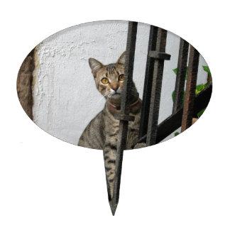 Gato de Tabby Figura De Tarta