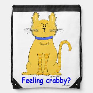 Gato de tabby amarillo malhumorado, malhumorado en mochilas
