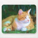 Gato de Tabby anaranjado Alfombrilla De Raton