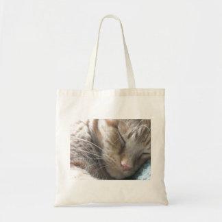 Gato de Tabby anaranjado Bolsa De Mano