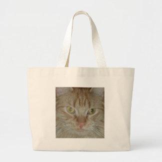 Gato de Tabby anaranjado Bolsas Lienzo