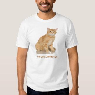 Gato de Tabby anaranjado Camisas