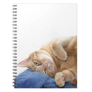 Gato de tabby anaranjado cuaderno