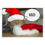 Gato de Tabby anaranjado del navidad Felicitacion