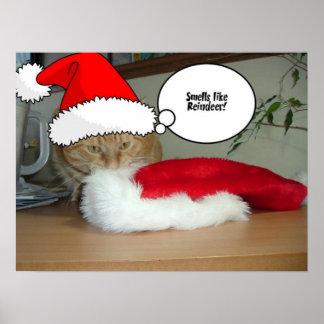 Gato de Tabby anaranjado del navidad Póster