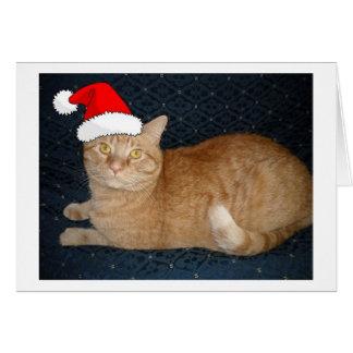 Gato de Tabby anaranjado del navidad Tarjeta De Felicitación