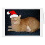 Gato de Tabby anaranjado del navidad Tarjetas
