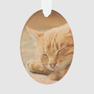 Gato de Tabby anaranjado el dormir