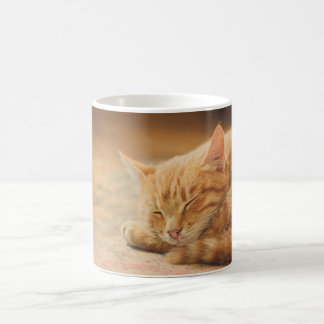 Gato de Tabby anaranjado el dormir Tazas De Café