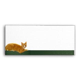 Gato de Tabby anaranjado en la cerca verde Sobres