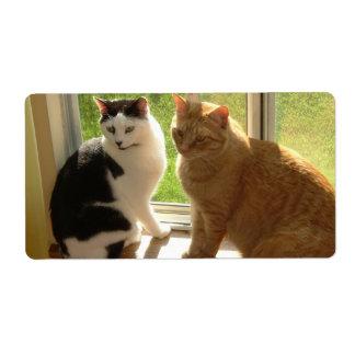 Gato de Tabby anaranjado/gato del negro y del Etiquetas De Envío