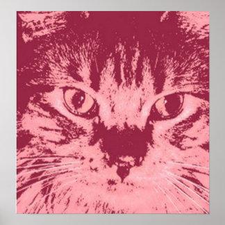 Gato de Tabby anaranjado Impresiones
