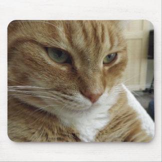 Gato de Tabby anaranjado Mousepad Tapete De Raton