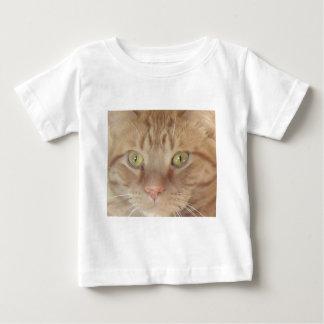 Gato de Tabby anaranjado Playera