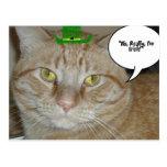 Gato de Tabby anaranjado Postales