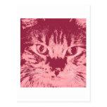 Gato de Tabby anaranjado Tarjeta Postal