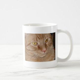 Gato de Tabby anaranjado Taza De Café