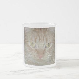 Gato de Tabby anaranjado Tazas