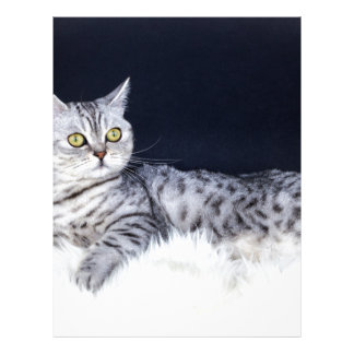 Gato de tabby británico de la plata del pelo corto membrete a diseño