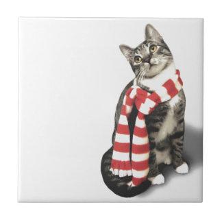 Gato de Tabby de Brown en una bufanda roja y Tejas Cerámicas