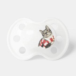 Gato de Tabby de Brown en una bufanda roja y Chupete