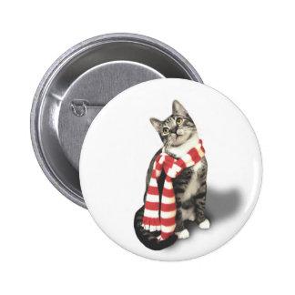 Gato de Tabby de Brown en una bufanda roja y Pins