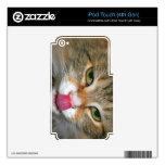 Gato de Tabby de Brown que lame la nariz iPod Touch 4G Skin