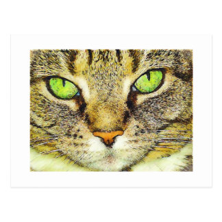 Gato de Tabby de ojos verdes Postal