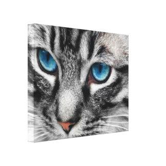 Gato de Tabby de plata de A-PAL 20x16 con los ojos Impresiones De Lienzo