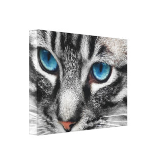Gato de Tabby de plata de A-PAL 24x18 con los ojos Lona Estirada Galerías