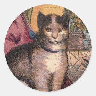 Gato de Tabby del mascota con el pegatina de Blue