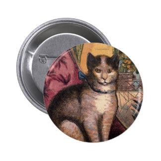 Gato de Tabby del mascota con la insignia del botó Pin
