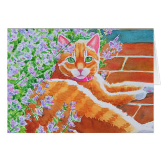 Gato de Tabby en la trayectoria del jardín Tarjeta De Felicitación