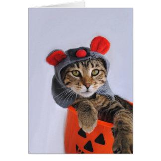 Gato de Tabby en tarjeta del traje del ratón