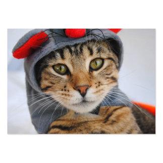 Gato de Tabby en tarjetas de visita del traje del