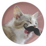 Gato de Tabby fresco del jengibre con la lengua ha Platos