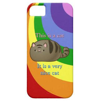 Gato de Tabby iPhone 5 Cobertura