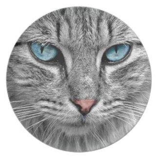 Gato de tabby gris de la caballa con los ojos platos de comidas
