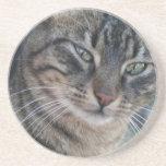 Gato de Tabby inquisitivo con los ojos verdes Posavasos Manualidades