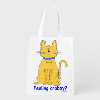 Gato de tabby malhumorado, irritable en bolso de c