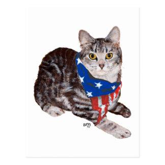 Gato de Tabby patriótico de Shorthair del american Postales