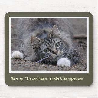 Gato de Tabby que vigila Alfombrillas De Ratón