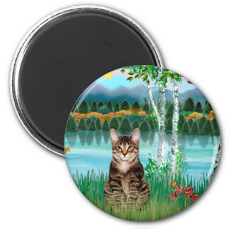 Gato de tigre del Tabby - abedules Imán Redondo 5 Cm