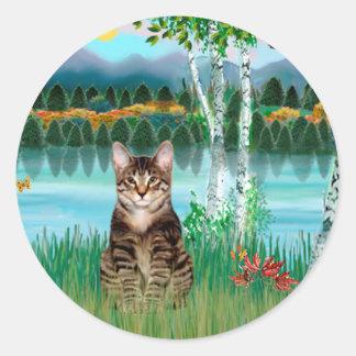 Gato de tigre del Tabby - abedules Pegatina Redonda