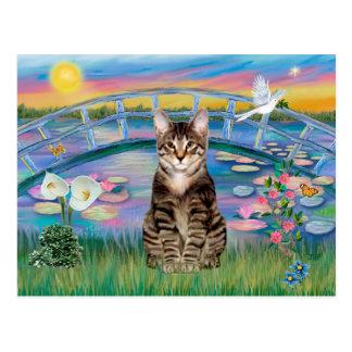 Gato de tigre del Tabby - lirios de la salida del  Tarjeta Postal