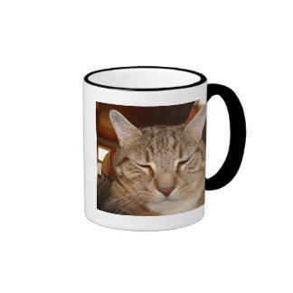 Gato de tigre del Tabby Taza De Dos Colores