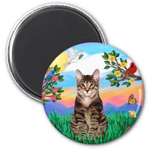 Gato de tigre del Tabby - vida brillante Imán Para Frigorifico