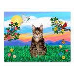 Gato de tigre del Tabby - vida brillante Postal